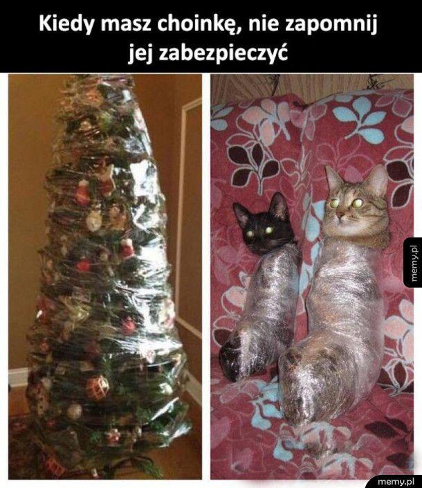 Choinka vs koteły