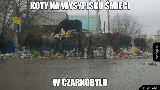 Czarnobyl