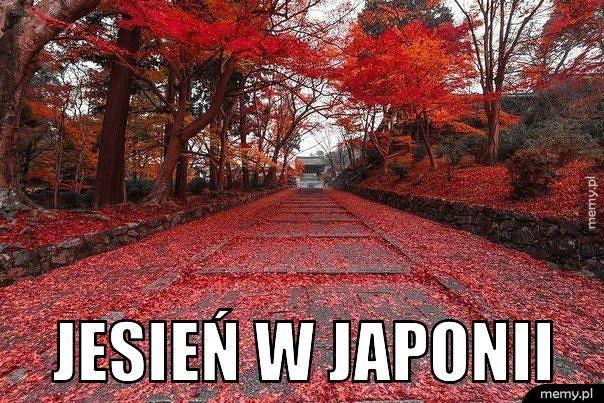 Jesień w Japonii