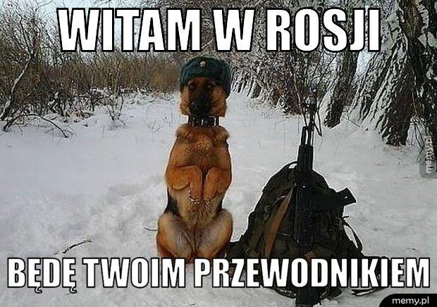 Witam w Rosji   Będę twoim przewodnikiem