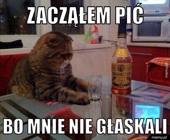 Problemy kota