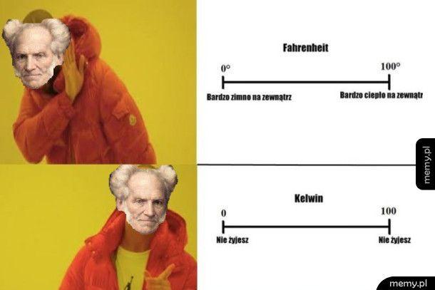 Schopenhauer wie co dobre