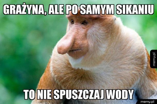 Oszczędny Janusz