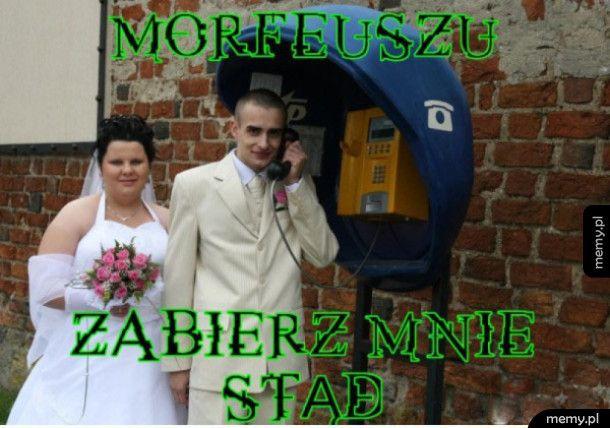 Morfeusz?