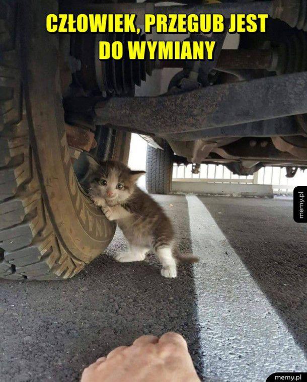 Najlepszy mechanik