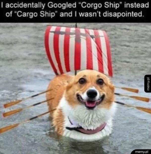 Corgo ship