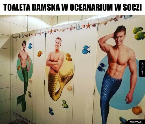 Bardzo fajna toaleta