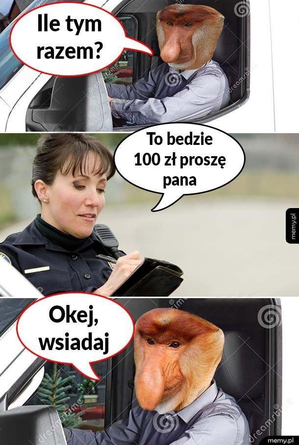 Janusz i pani policjantka