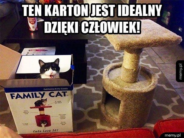 Koteł jaki szcześliwy