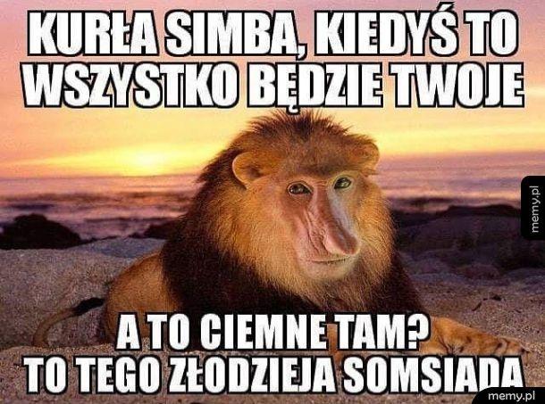 Kurła Simba