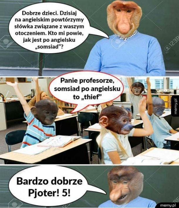 Somsiad po angielsku