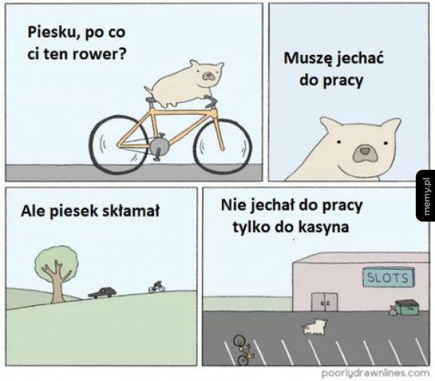 Pies kłamczuszek
