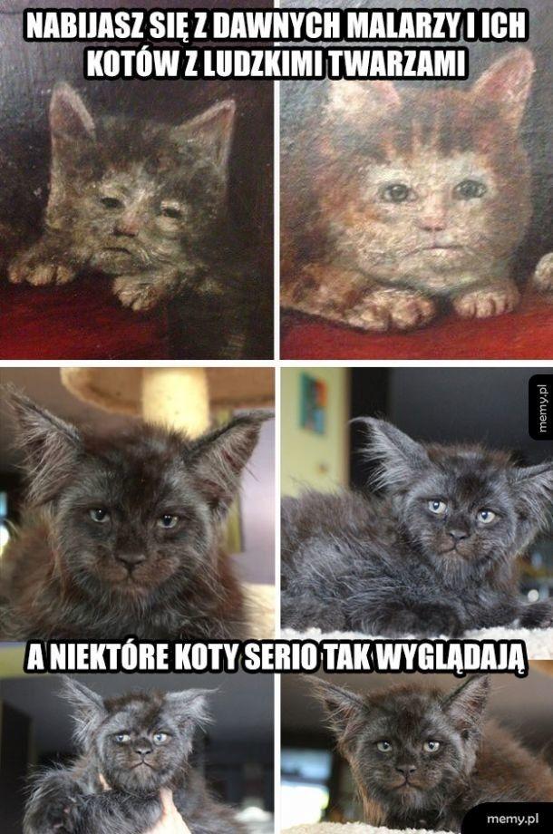 Brzydkie kotki z obrazów