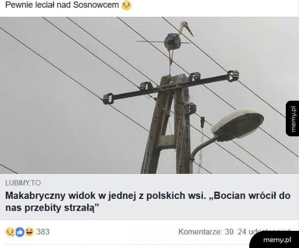 Tymczasem na Podlasiu..