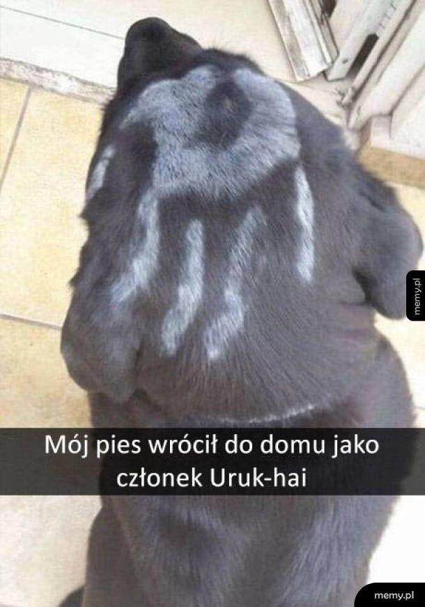 Uruk-pieseł