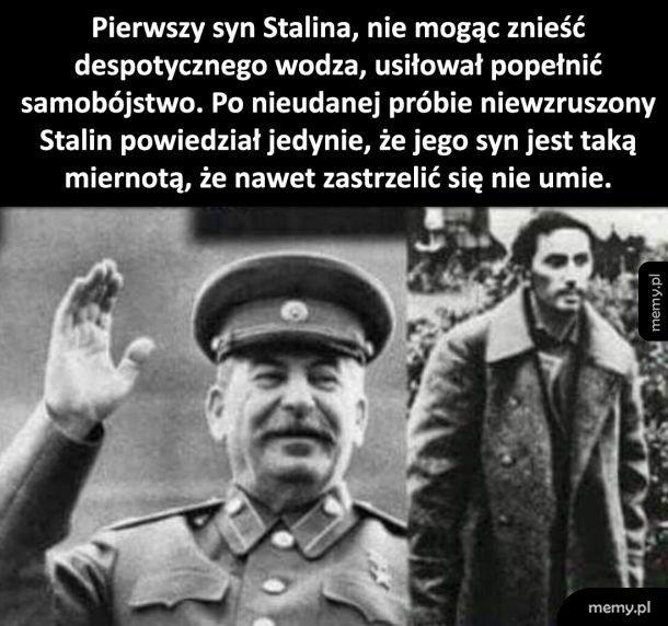 Syn Stalina