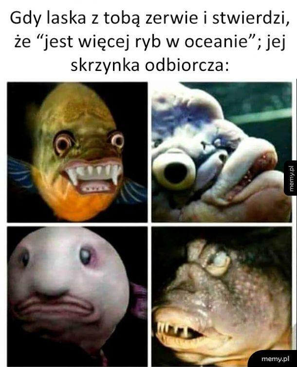 Chyba nie o takie ryby chodziło