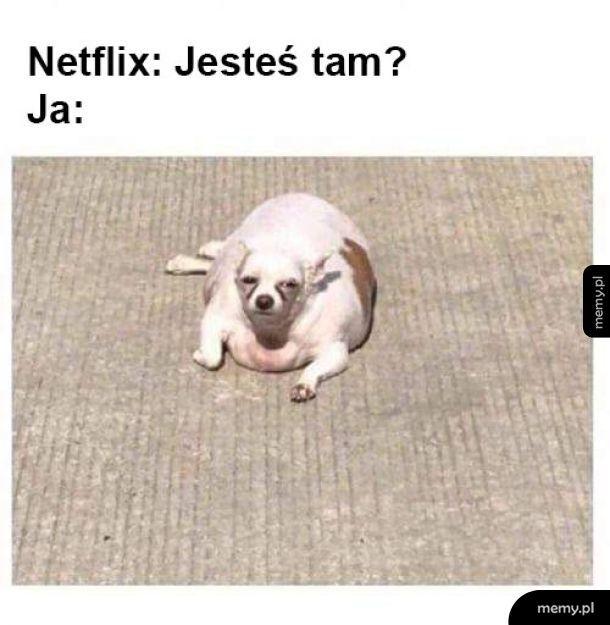 Netflix i ja