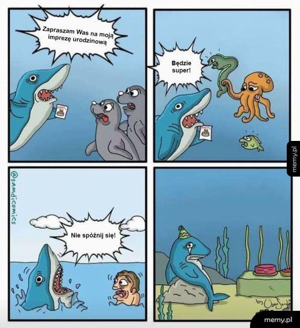 Biedny Rekin