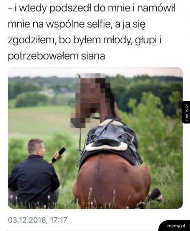 Nawet Koń dał się nabrać