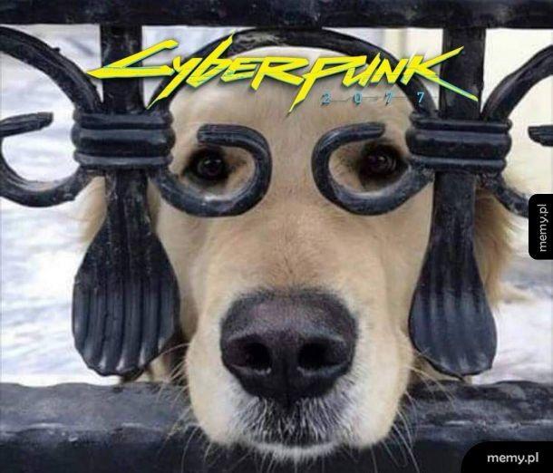 Cyberdoge 2077