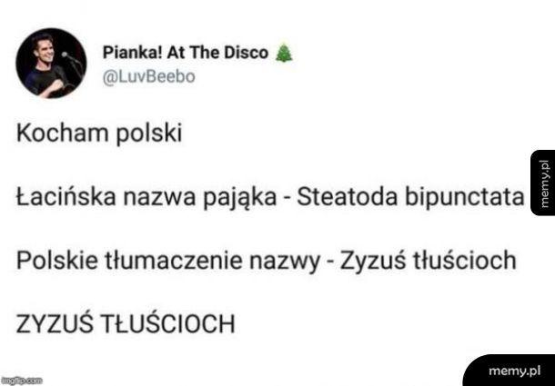 Polski język piękny język