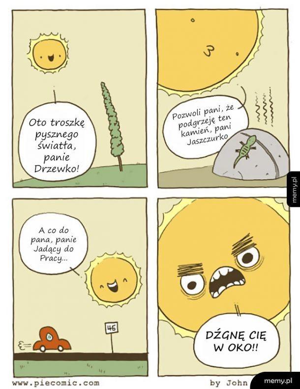 Typowe Słoneczko