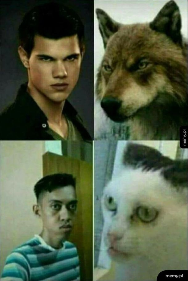 Podobieństwo