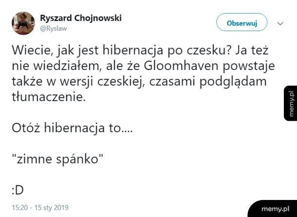 Czeski język