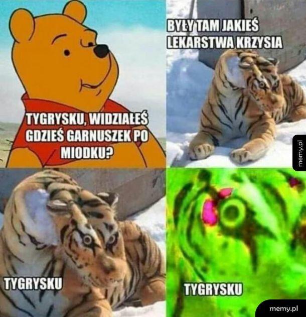 Tygrysku co z tobą nie tak