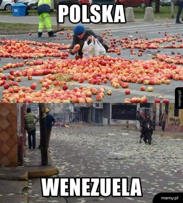 Polska vs Wenezuela
