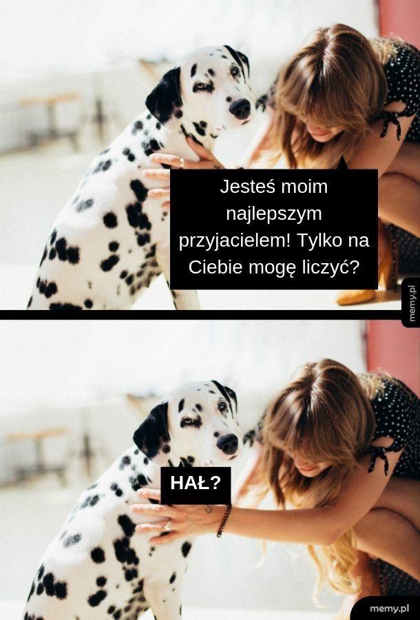 \(ツ)/ HAŁ