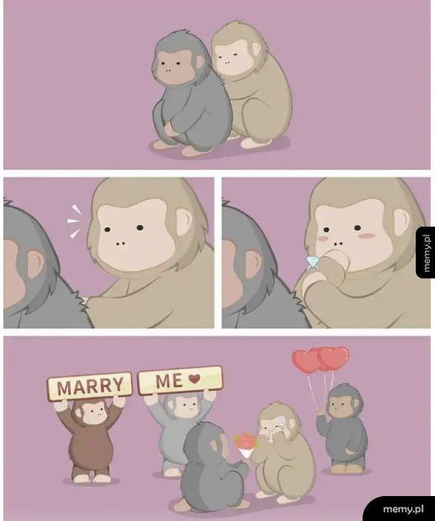 Małpiatki