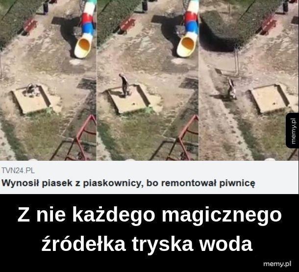 Janusz budowy