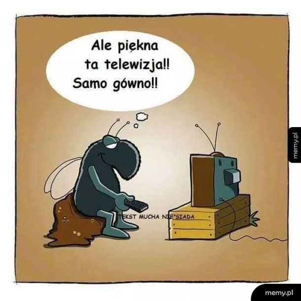 Piękna telewizja
