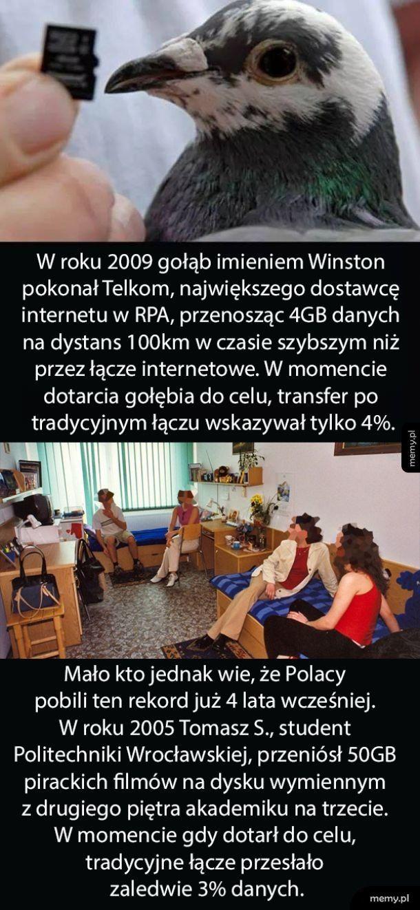 Szybki Internet