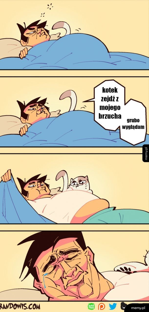 W łóżku z kotem