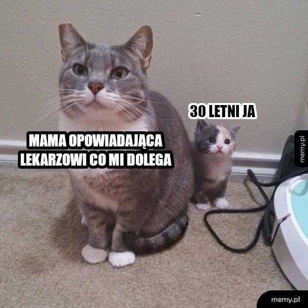 Pan doktor zapytał, jak się masz koteczku?