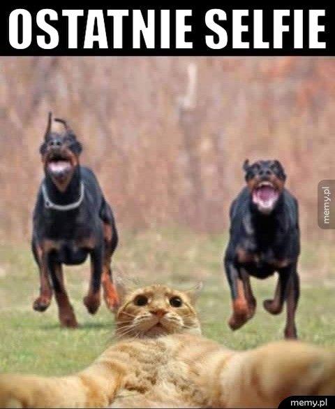 Ostatnie selfie