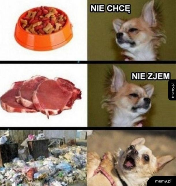 Psia logika