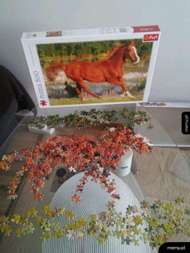 Puzzle to moja pasja