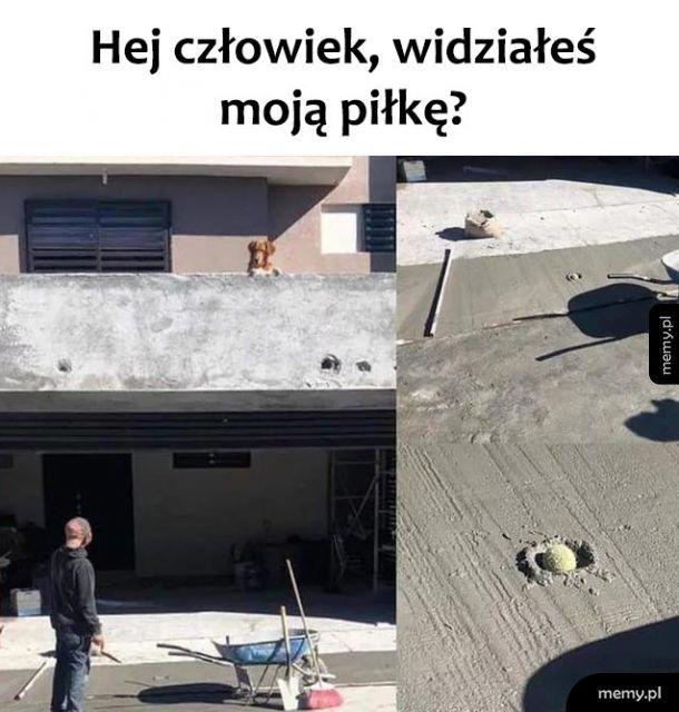 Hejka