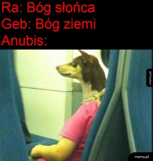 Anubis!!