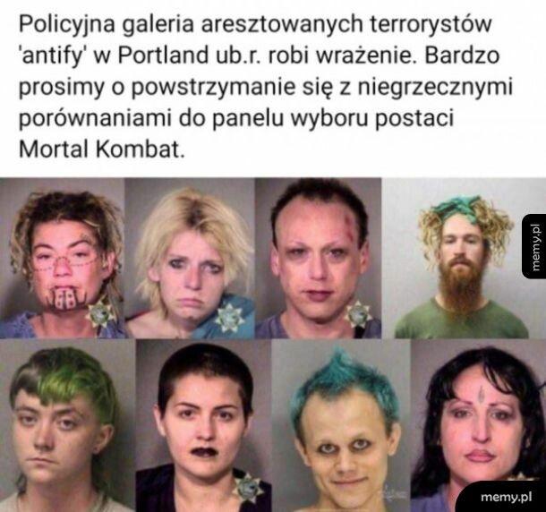 Terroryści antify