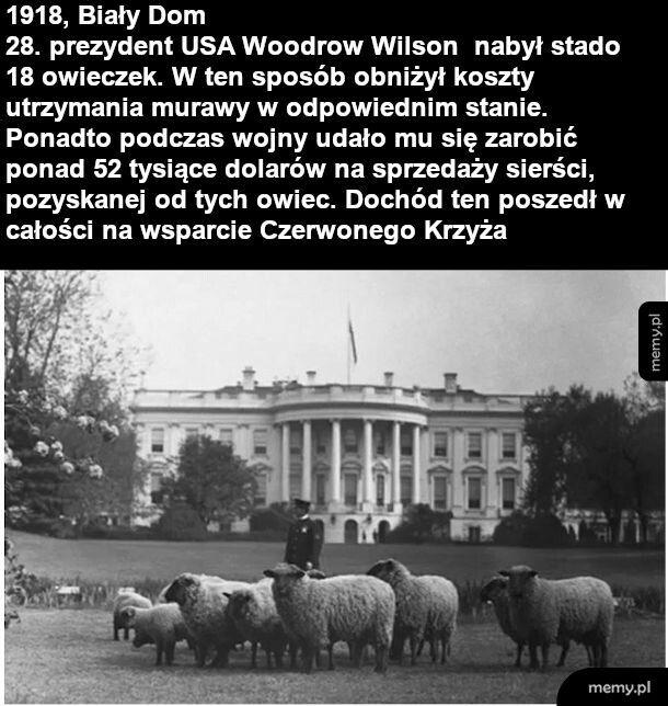 Dwudziesty ósmy prezydent