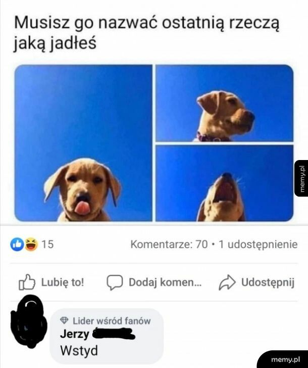 Nazwij psa