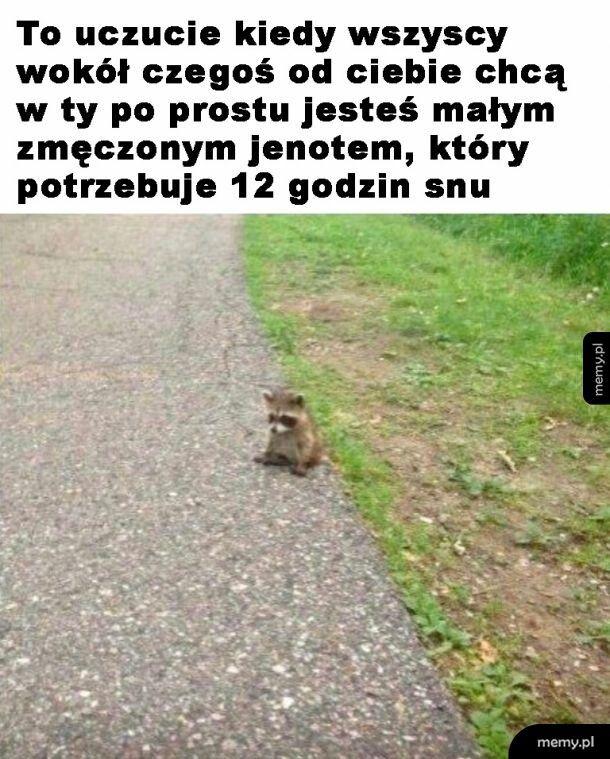 Jenot