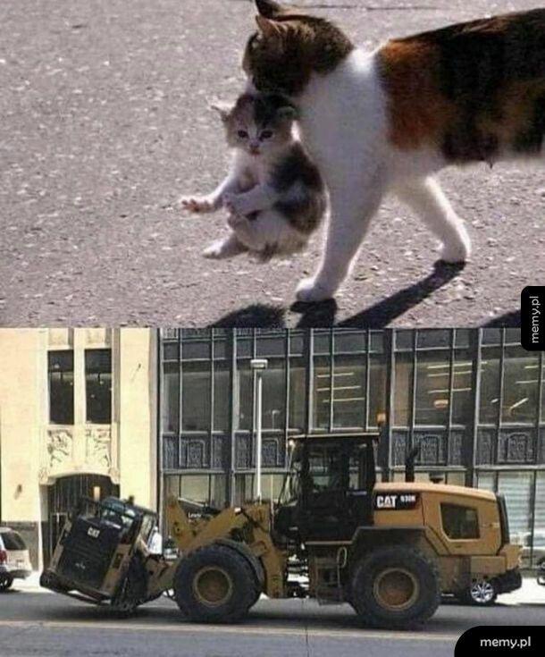 Nie widzę różnicy