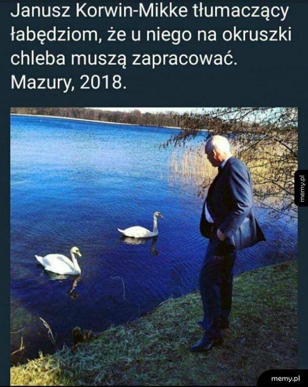 Janusz Korwin  -Mikke