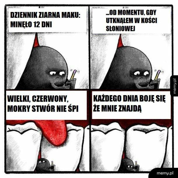 Przygody Pana Maczka Negri